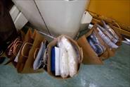 пакеты с платками