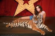 Фотосессии с животными и хищниками