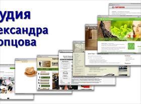 Студия Александра Скопцова