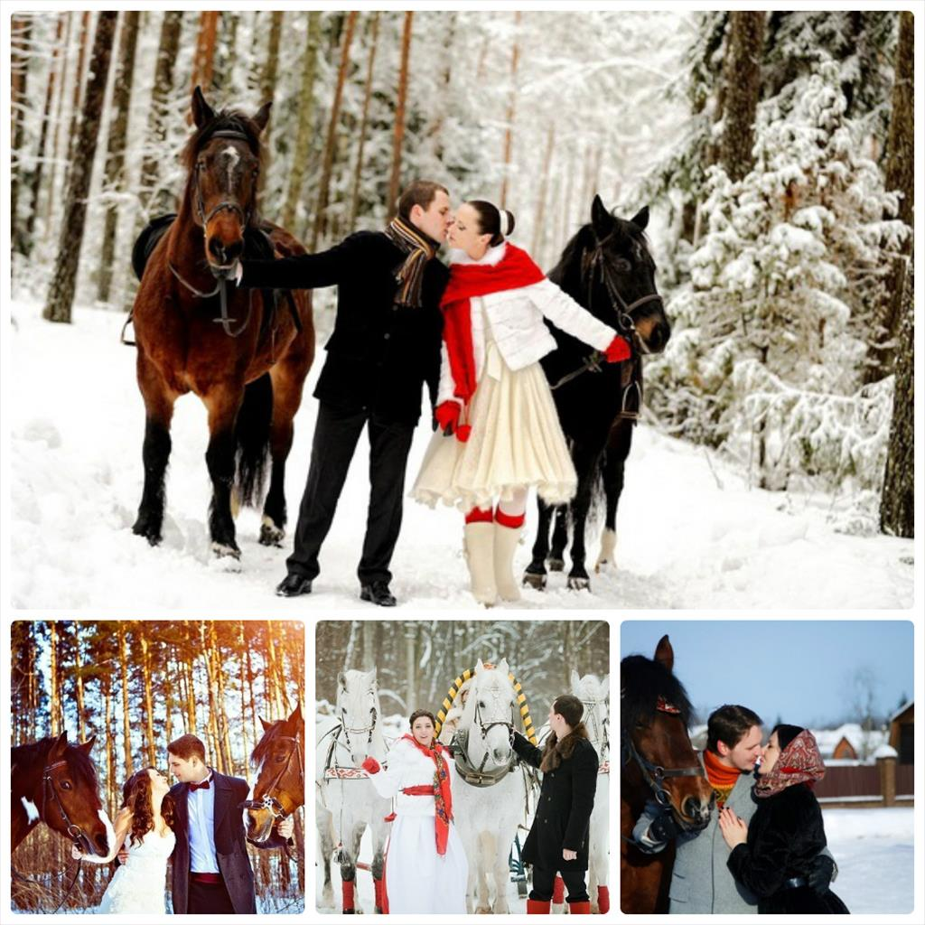 фотосессия зимой на лошади